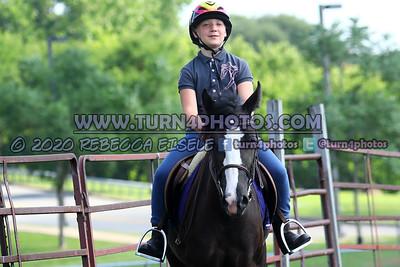 Walk/Trot Equitation (on the rail) 07/26/20