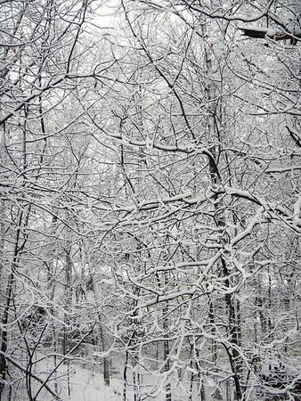 Snow 10 12 13