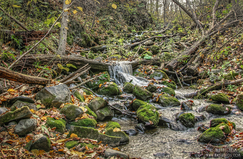 Fall Stream (Horizontal )  Photography by Wayne Heim
