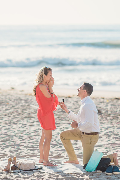 Rich & Mimi // Proposal