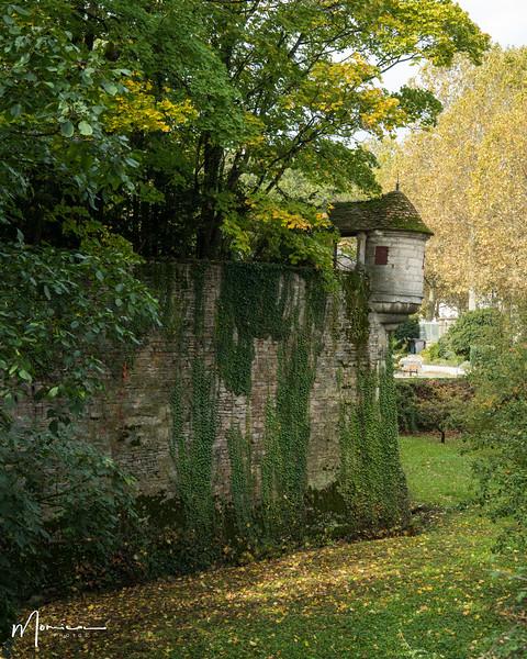 2019-10 - Burgundy Vacation-2920_edit.jpg