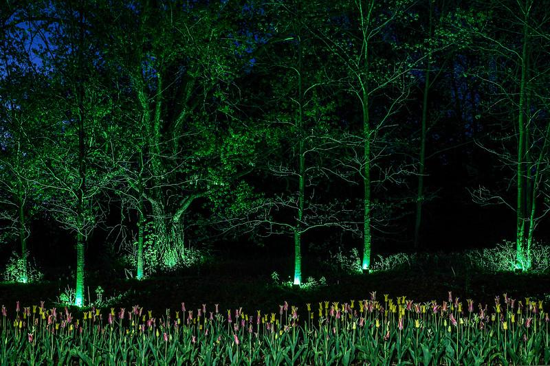 Arboretum Misc-3.JPG