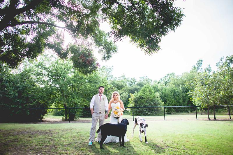 2014 09 14 Waddle Wedding - Bride and Groom-776.jpg