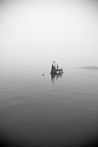 40. Kelp farm, Casco Bay, Maine, May 2013.