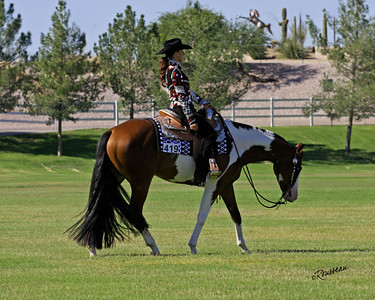 Russell Performance Horses