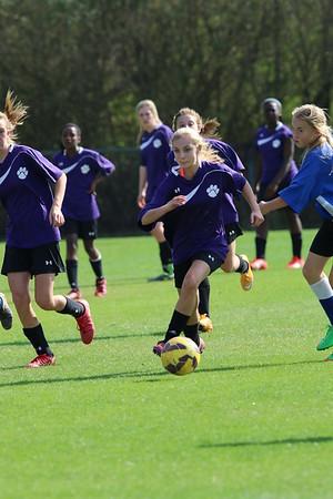 DMS Soccer Girls 24 Mar 2015