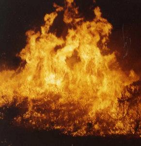 U>S. Forest Service Hotshots, Los Prietos