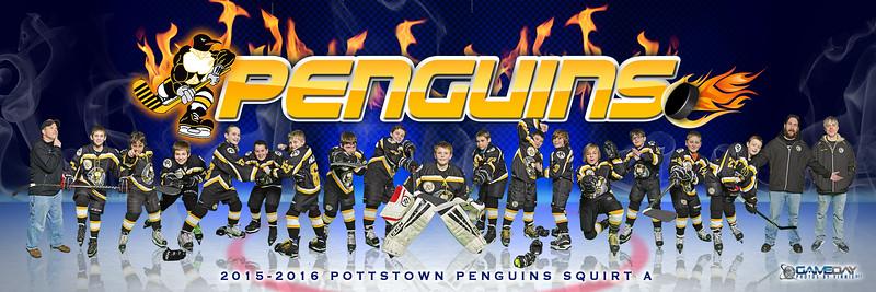 Pottstown Penguins
