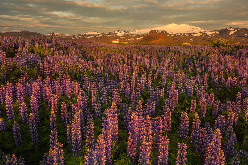 Iceland-summer-photos_02.jpg