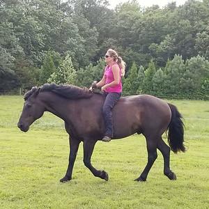 About my horsemanship