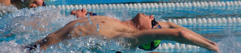 2011 Swimming