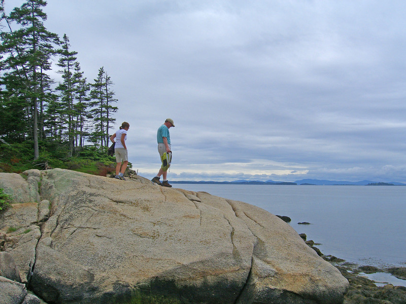 Series of photos taken by Carole Sargent, Barred Island Preserve, Island Heritage Trust of Deer Isle, Maine
