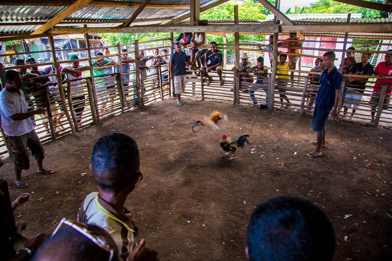 Timor Leste-119.jpg