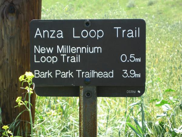 2008-4-17-New Millennium Trail