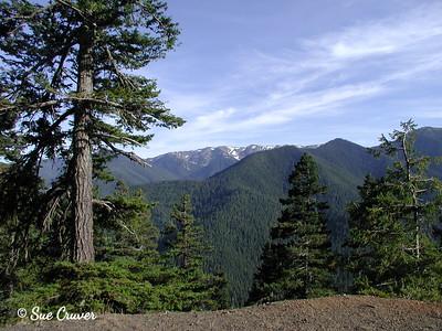 OLYMPIC MOUNTAINS - WASHINGTON STATE