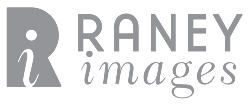 RI_logo_gray.png