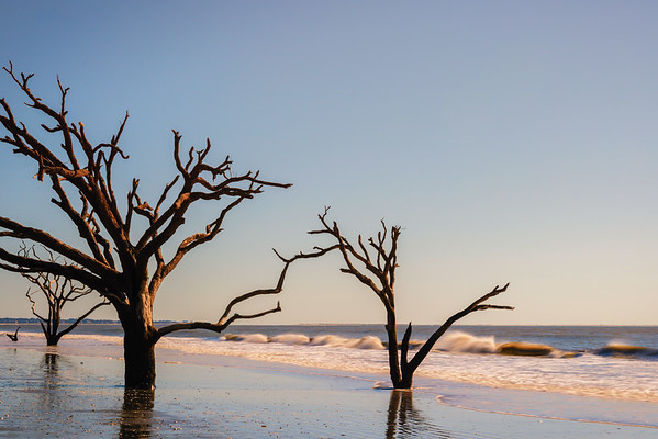 Low Country Scenes