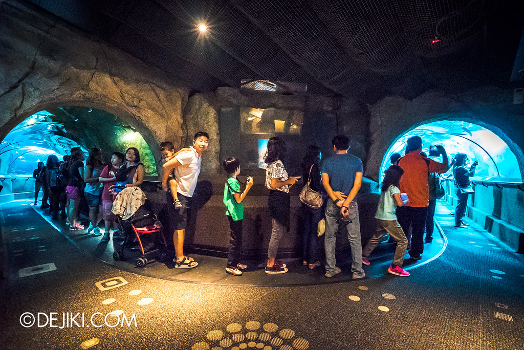 Underwater World Singapore - Tunnel u-turn