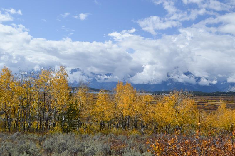 Kurt's Yellowstone & Grand Tetons-330-250.jpg