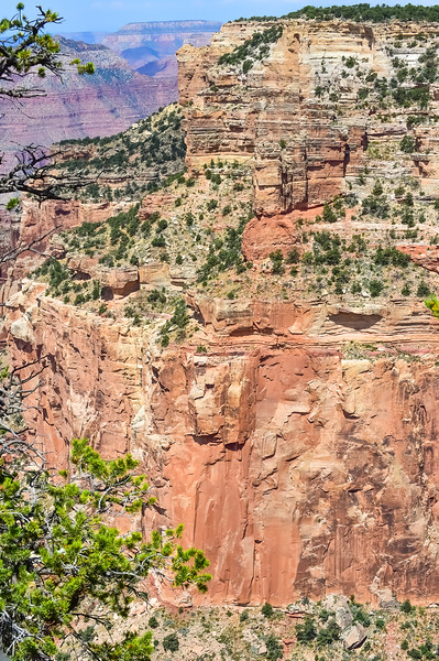 2019 Grand Canyon-329.jpg