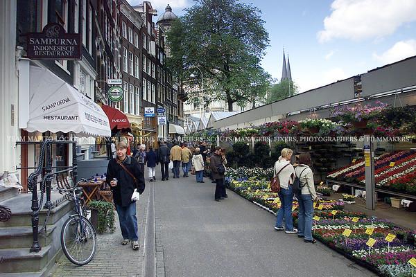🇳🇱Flower Markets & Flower Shops   Let's Go MAPITO