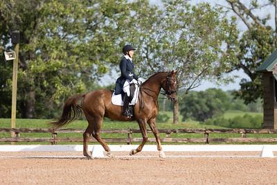 Horse 409