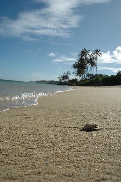 Hawaii - Kahala Beach-109.JPG