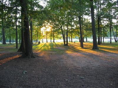 Millwoods_nearing_sundown.jpg.jpeg