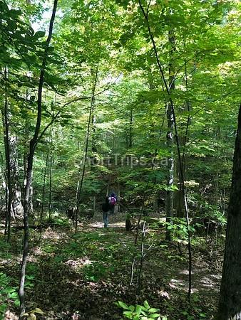 Northumberland Nature Walk Tour • Sept 21, 2019