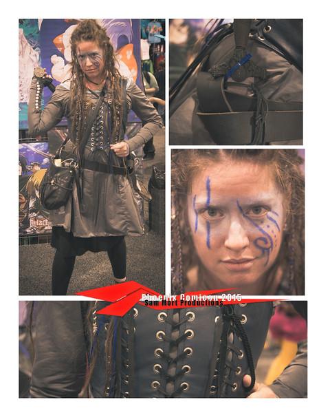 Collage_warrior_Comicon_2015.jpg