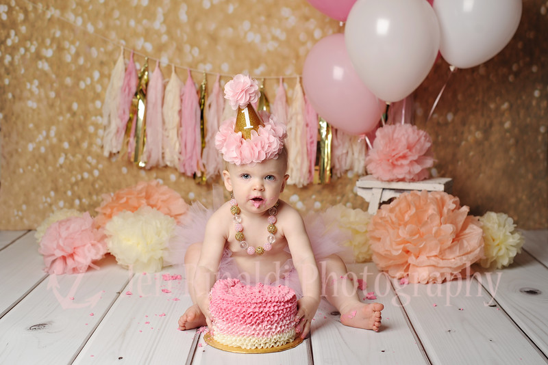 Scarlett 1 Year + Cake Smash 4/26/16