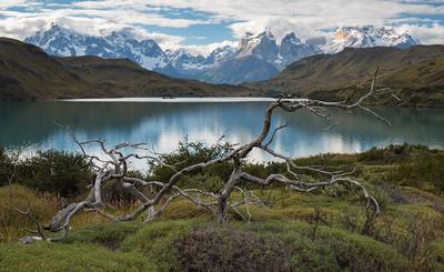 Patagonia!