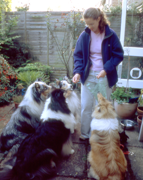 366 Amber with Natalie & dogs.jpg
