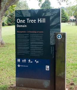 Auckland and Vicinity - Tiritiri Matangi Island, Muriwai Beach, Cascade Kauri Park