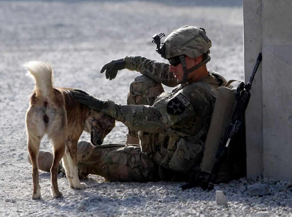""". U.S. Army soldier SPC Collin Pallesen of \""""Attack\"""" Co, 2nd Battalion, 1st Infantry Regiment plays with an Afghanistan dog named \""""Tango\"""" before heading out of Combat Outpost Kandalay to patrol in Zharay district, in Kandahar province, southern Afghanistan October 27, 2012. \""""Tango\"""" always comes with the platoon during patrols, Pallesen said.   REUTERS/Erik De Castro"""