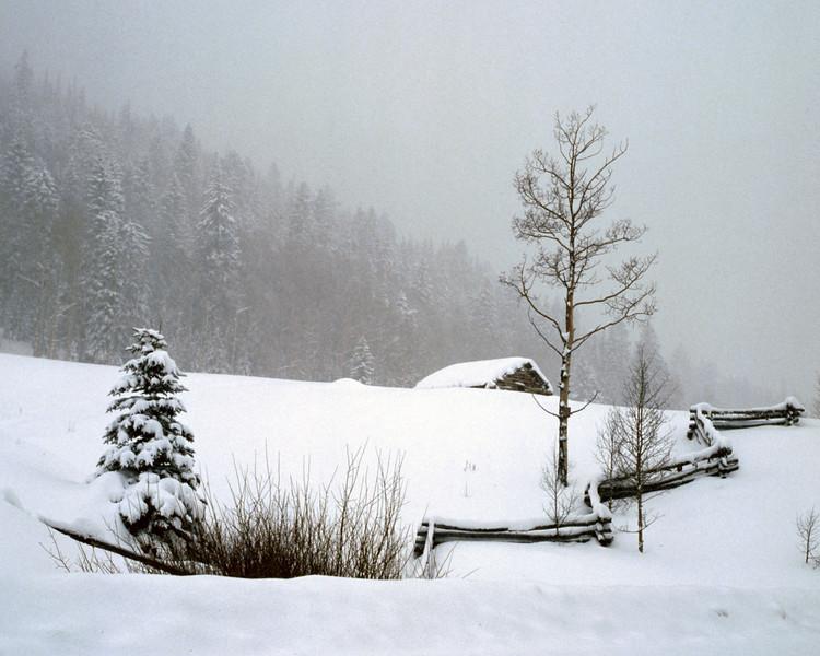 Snowy Cabin White.jpg