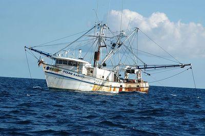 Scallop Boats