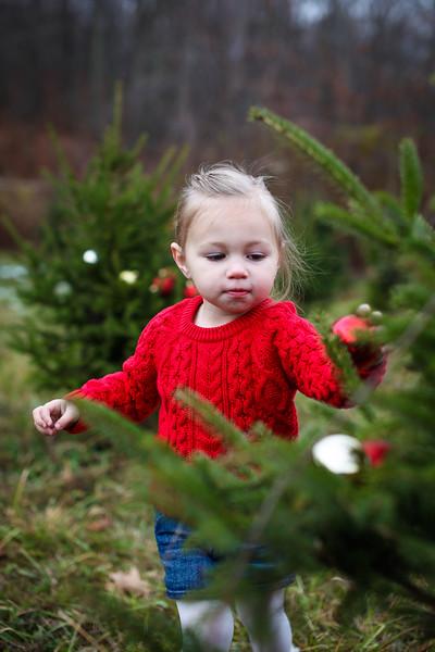 2014.11.16 - Lichaj Family {{Christmas Mini}}