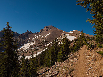 Wheeler Peak Trail and View