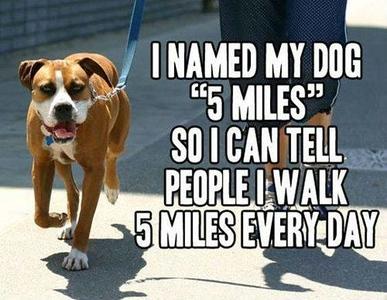5 miles..jpg