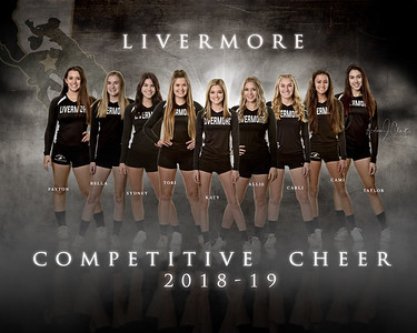 LHS COMPETITIVE CHEER 2018-19