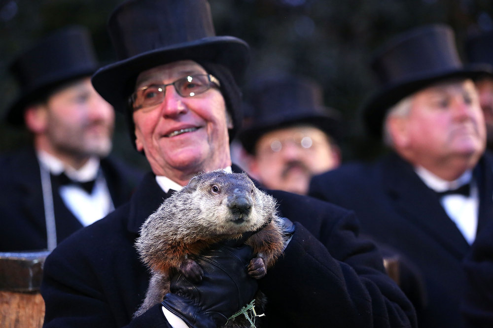 Description of . Groundhog co-handler Ron Ploucha (2nd L) holds Punxsutawney Phil after Phil didn't see his shadow and predicting an early spring during the 127th Groundhog Day Celebration at Gobbler's Knob on February 2, 2013 in Punxsutawney, Pennsylvania. The Punxsutawney 'Inner Circle' claimed that there were about 35,000 people gathered at the event to watch Phil's annual forecast.  (Photo by Alex Wong/Getty Images)