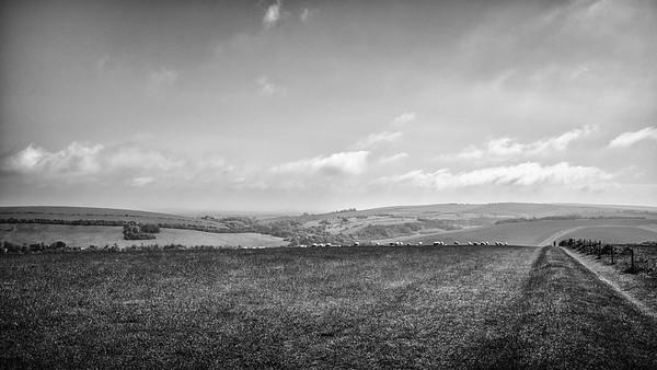 48,726 steps - Devil's Dyke to Berwick