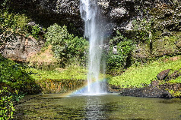 Bridal Veil Falls Raglan, New Zealand