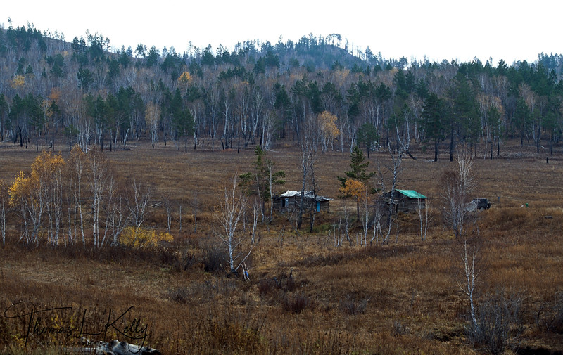 Forest Research station of Gonchigjaviin Tsedendash, he is incharge of Mongolian Forest Research Foundation. with a mandate to reforest the areas effected by environmental mining degradation.
