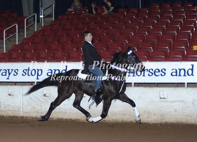 CLASS 13A- 3 & 4 YEAR OLD PACING