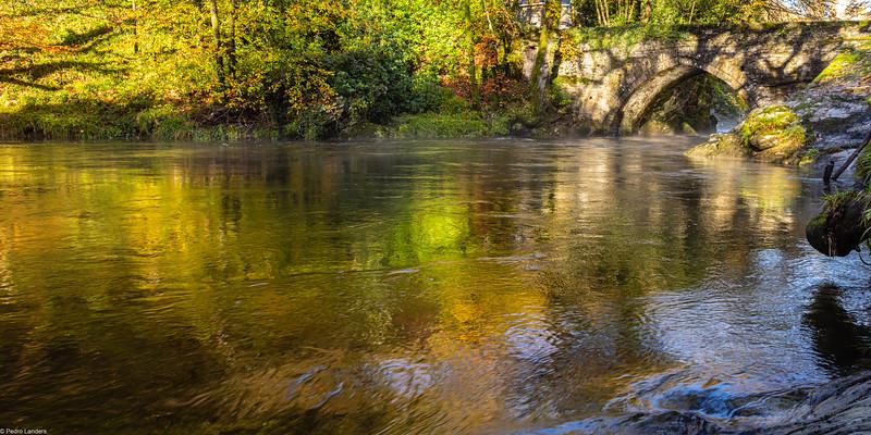 River Tavy in Full Flow