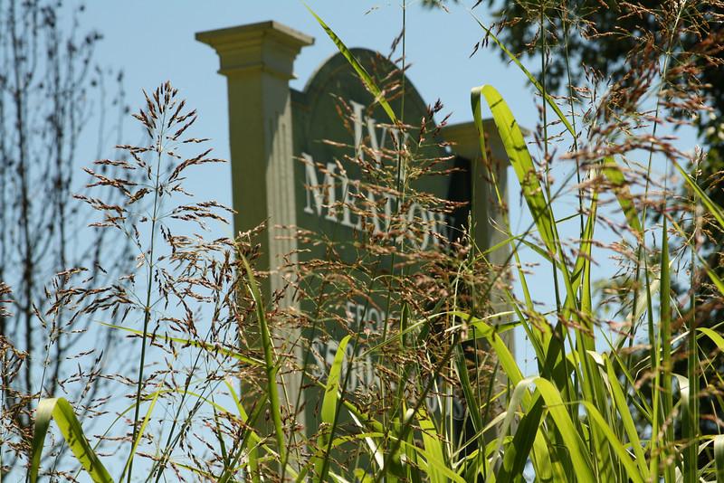 Ivy Meadow Cherokee County Canton GA (3).JPG