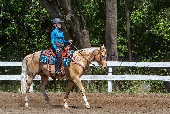 Equitation and Horsemanship