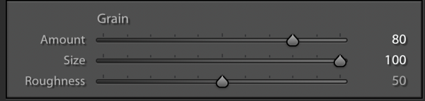 Grain Settings in the Effects Panel